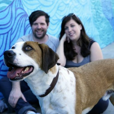 Downward Dog Show Cast interview – Talking to Samm Hodges, voice of Martin the dog