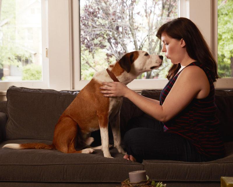 Downward Dog Cast - Downward Dog Interview