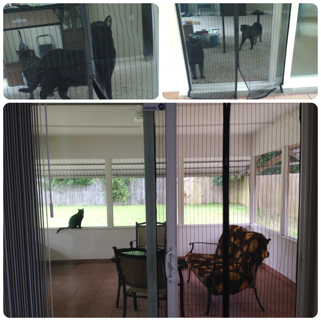 iGotTech Magnetic Screen door Finished