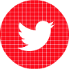 twitter red check circle social media icon
