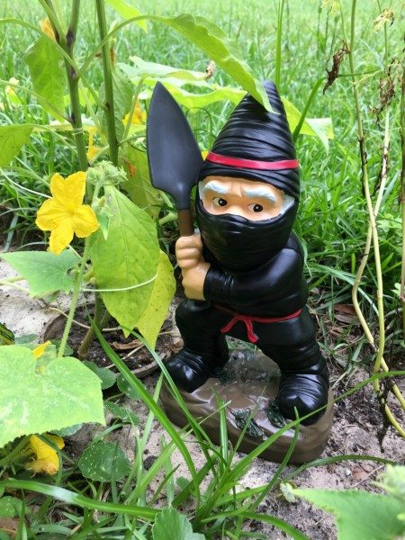 PRetties Gardeniing Series Ninja Gnome from Big Mouth Inc