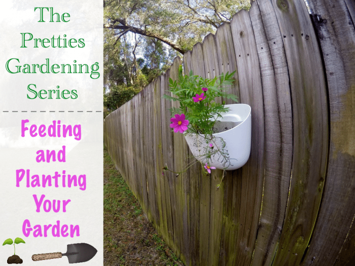 The Pretties Gardening Series Feeding and Planting Your Garden
