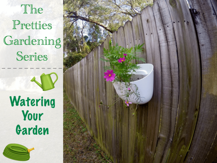 The Pretties Gardening Series Watering Your Garden Featured Image
