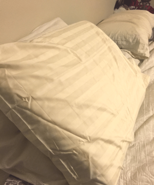 1000 Thread Count Pillows - Egyptian Cotton