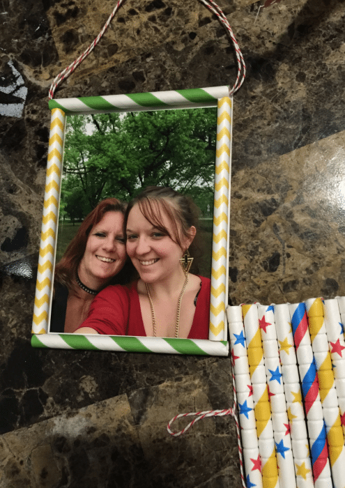 Aardvark Straws Picture Frame
