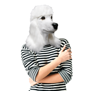 BMMA-WP-Poodle-Mask400