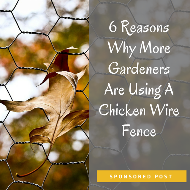 6 Reasons Why More Gardeners Are Using A Chicken Wire Fence