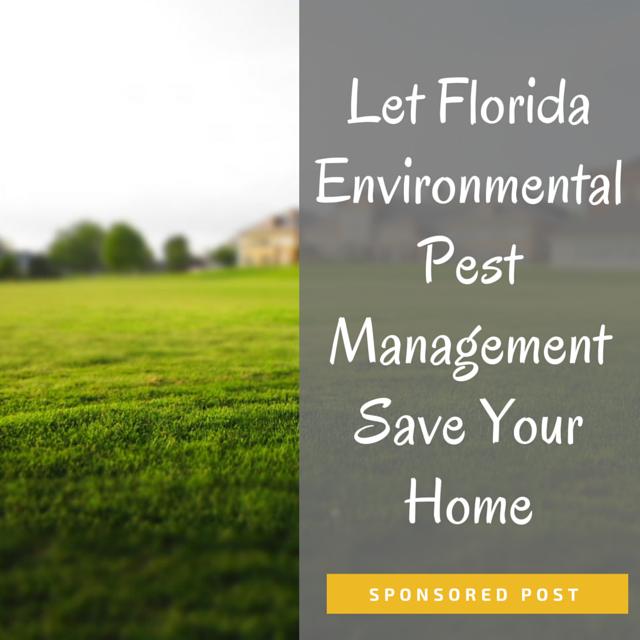 Let Florida Environmental Pest Management Save Your Home