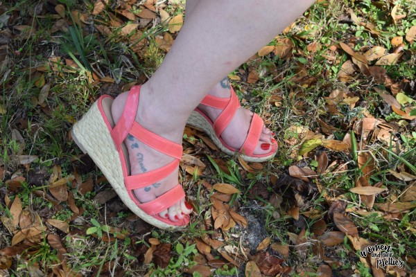Coral wedges from Chadwicks