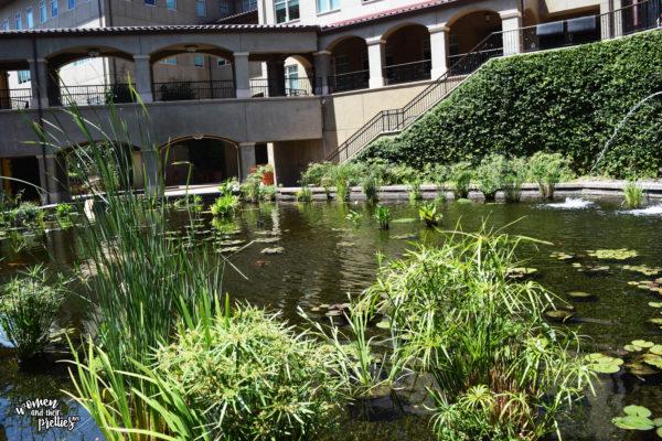 Lagoon at DreamWorks