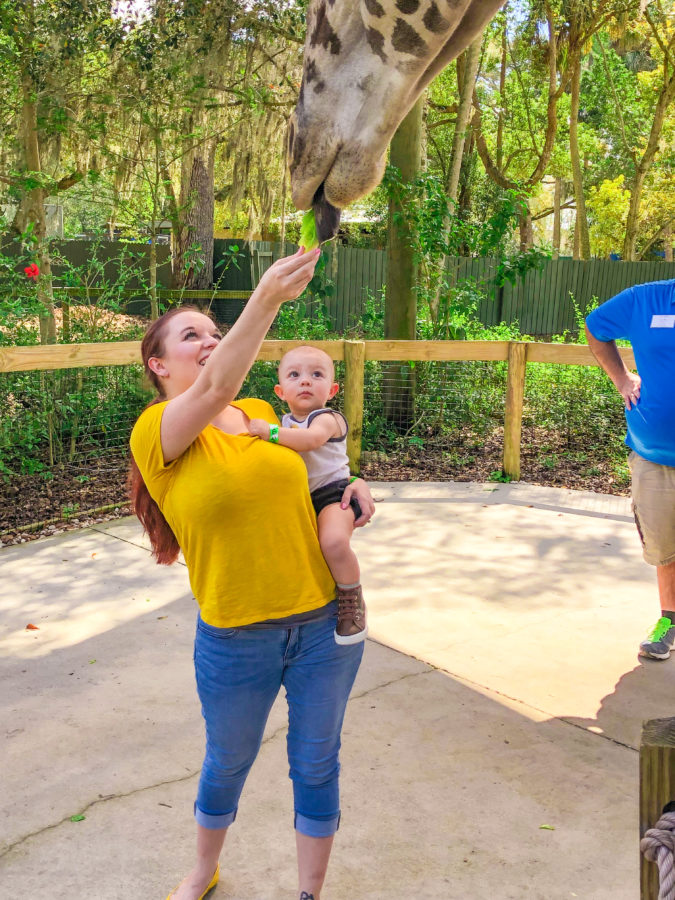 Central Florida Zoo Birthday Party Review_9969