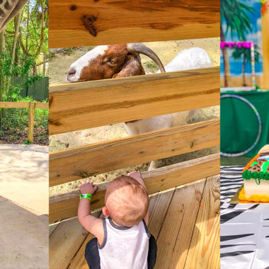 Why you should choose the Central Florida Zoo for a Birthday Party
