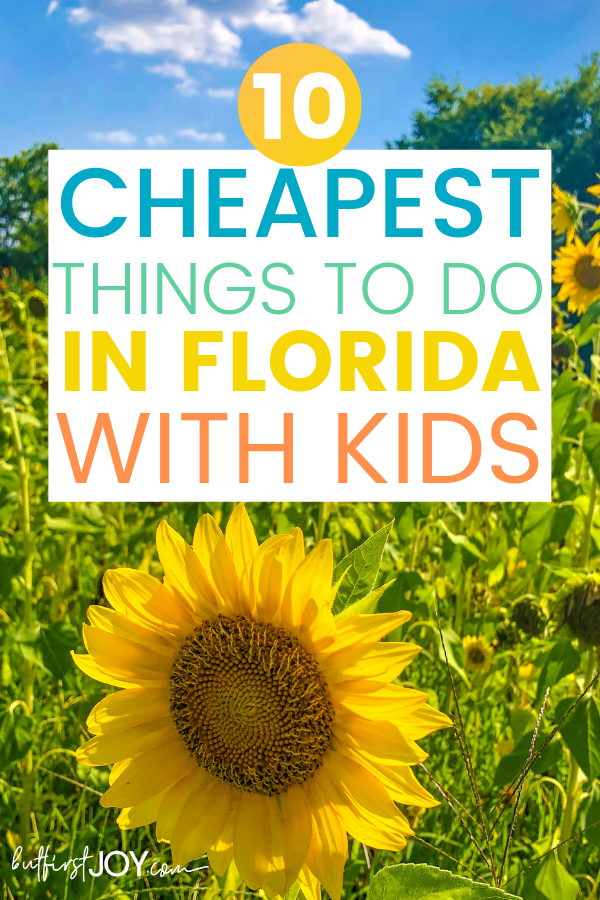 best cheap things to do in florida with kids