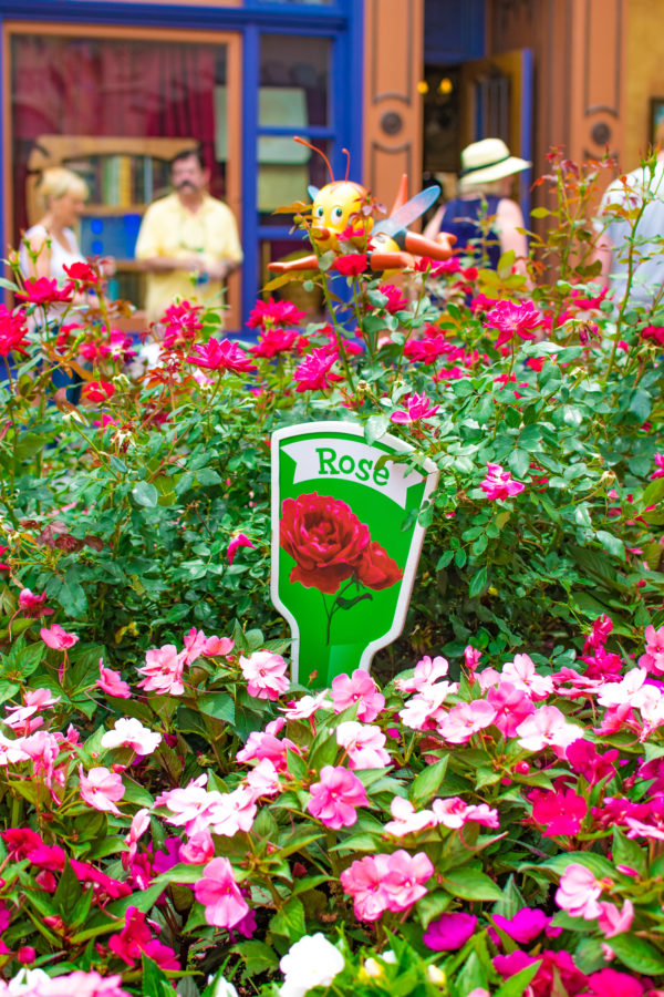 Scavenger Hunt at 2019 Epcot Flower & Garden Festival