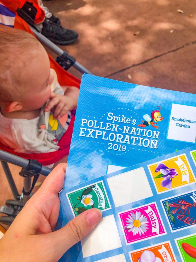 2019 Epcot Flower & Garden Festival
