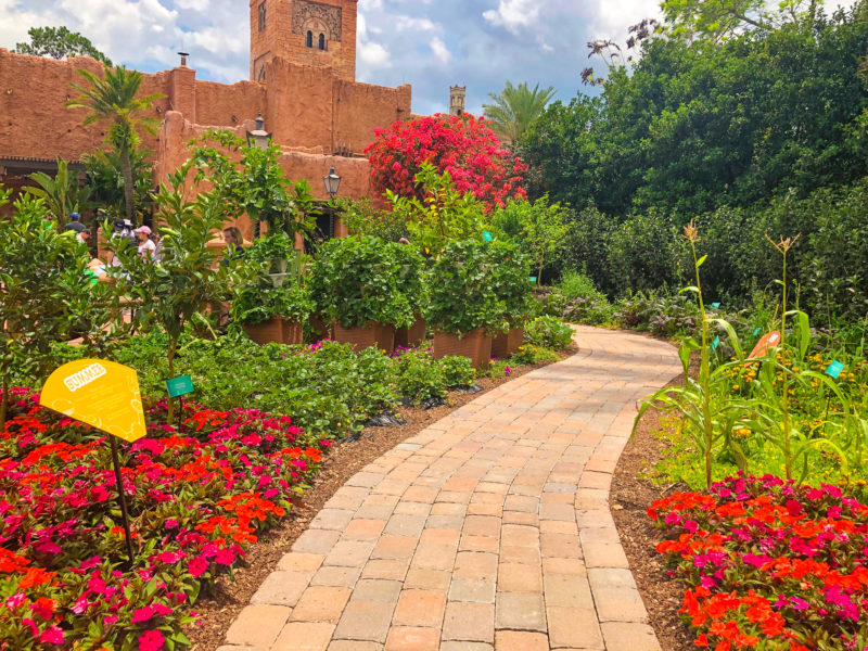 What to see at Epcot Flower & Garden Festival 2019