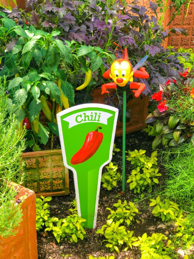 Scavenger Hunt 2019 Epcot Flower & Garden Festival