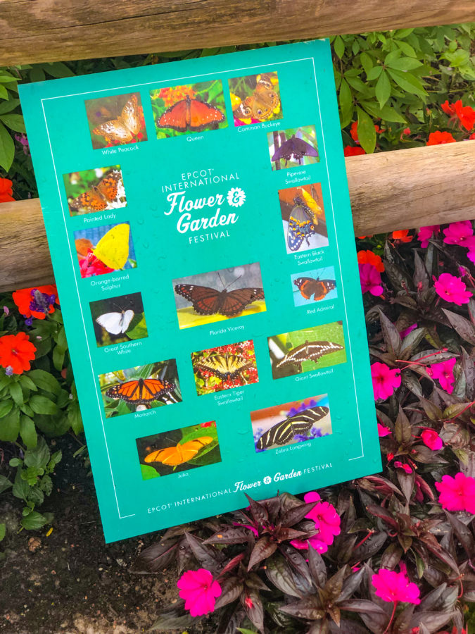 Best Things to Do at 2019 Epcot Flower & Garden Festival