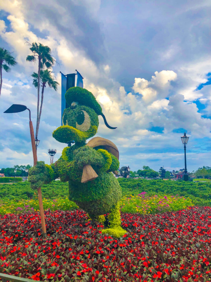 Donald Duck Topiary at Things to do 2019 Epcot Flower & Garden Festival