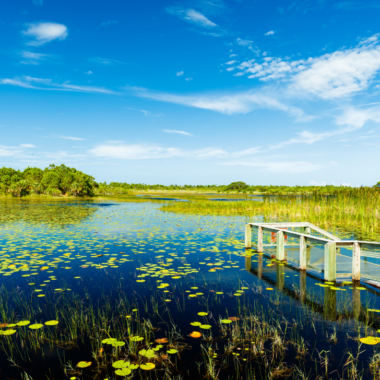 5 Best Weekend Trips in Florida (on a budget)