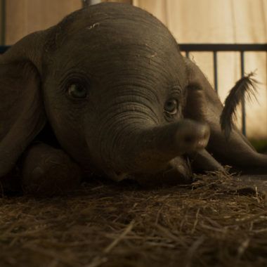 6 Best Live-Action Dumbo Quotes