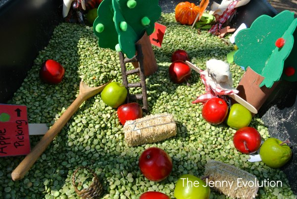 Fall Farm Sensory Bin for Preschool