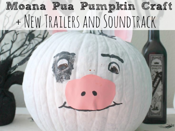 Moana Pua Pumpkin Craft