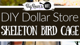 DIY Dollar Store Halloween Skeleton Bird Cage