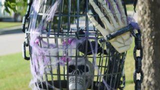 DIY Dollar Store Halloween Bird Cage