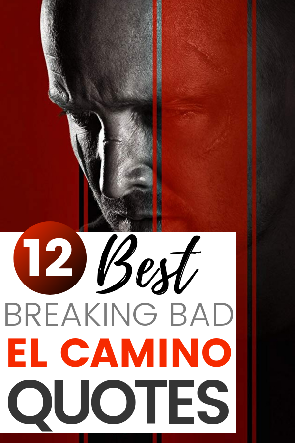 If you're eager to hear more about the Breaking Bad movie – then you'll love this fan review and best El Camino Movie Quotes.