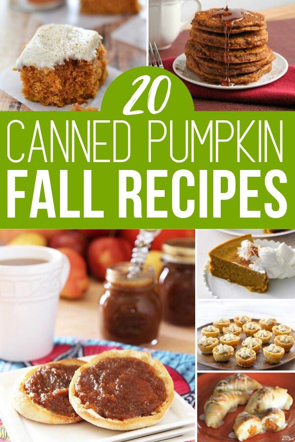 Best Canned Pumpkin Recipes