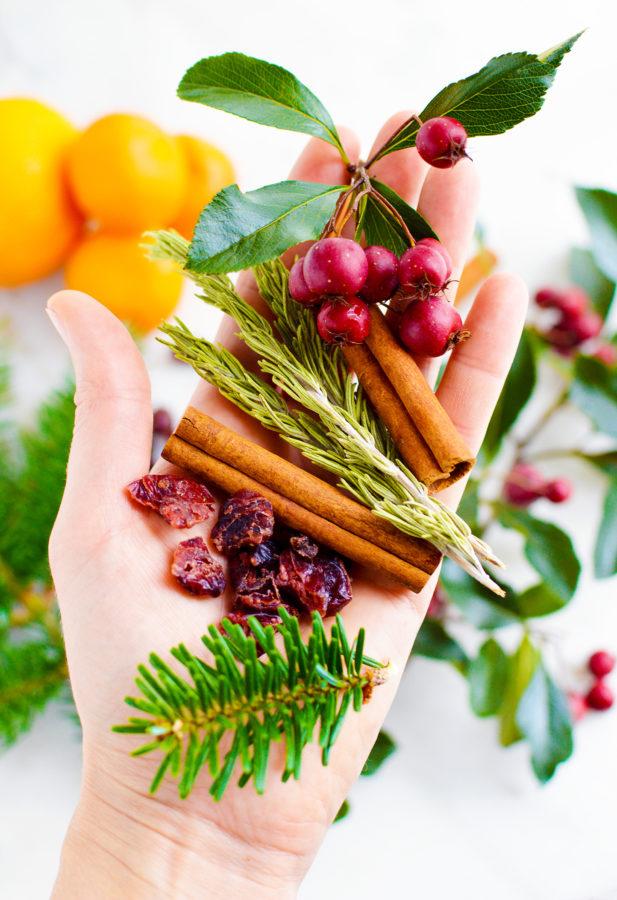 best christmas potpourri recipe