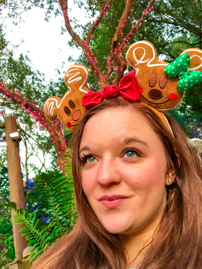 Christmas Merch Animal Kingdom