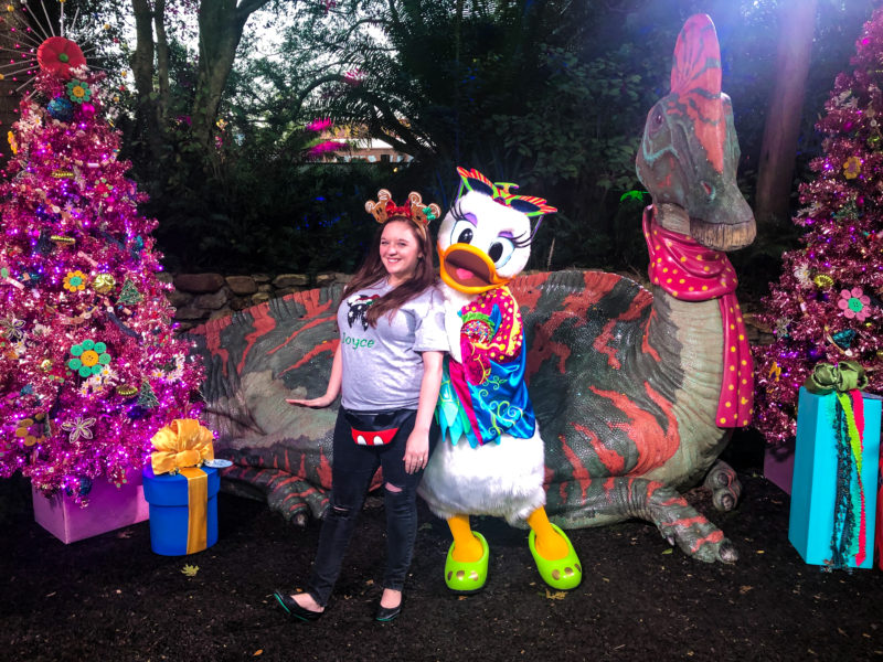 Christmas Characters Animal Kingdom