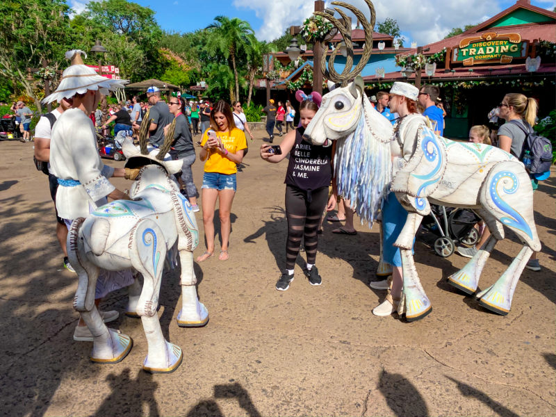 New Characters Animal KIngdom Christmas
