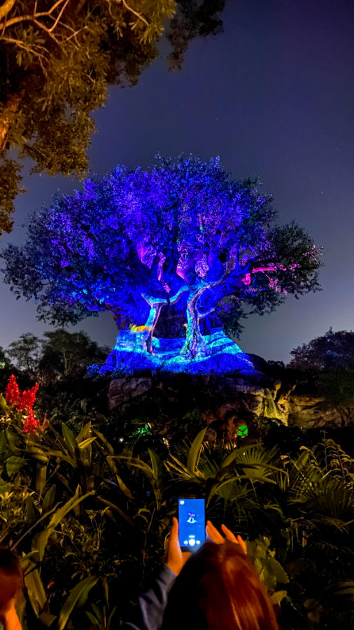 Tree of Life Awakenings Christmas