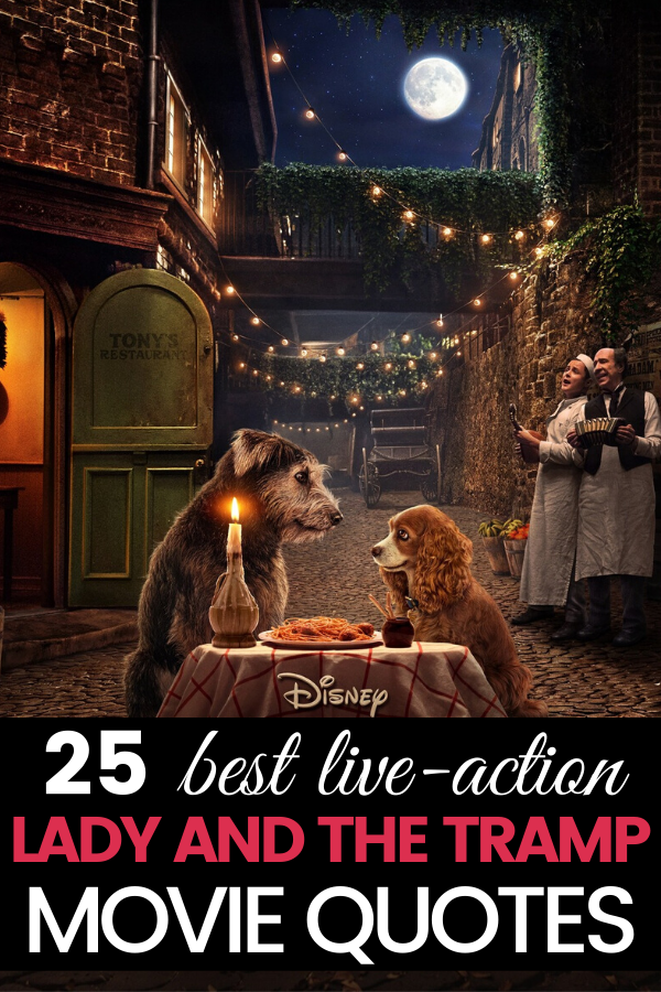 These are the best Disney+ Lady and The Tramp Movie Quotes from the 2019 live-action film. These quotes will make you laugh, cry, and feel all of the things. #DisneyPlus #LadyandTheTramp