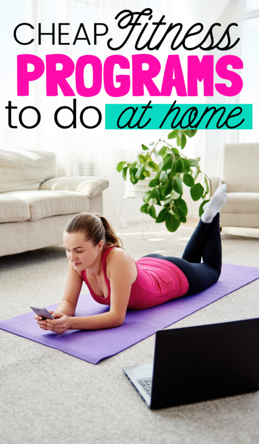 Are you excited to begin working out right away? These sites offer free & cheap virtual workouts to do from home. You won't believe the different options!