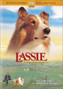Best dog movies that will make you love your pet even more
