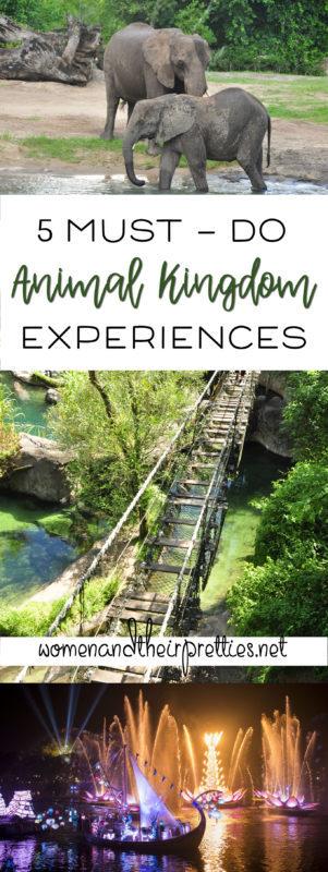 5 Must-Do Animal Kingdom Experiences