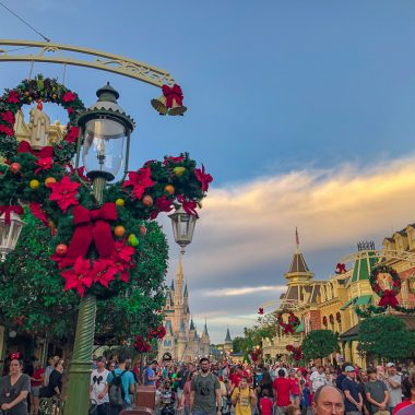 Magic Kingdom Christmas Decor